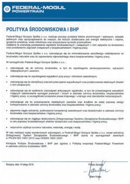 BHP I Ochrona   Polityka Srodowiskowa