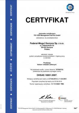 OHSAS 18001 Pol